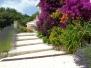Escalier en pierres